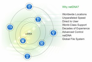 netDNA Structure