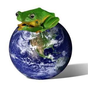 Frog soup concerns for the American economy