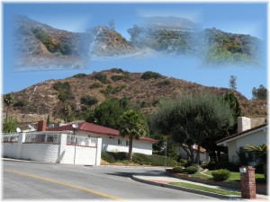 Houses in Burbank's Verdugu Moutnains