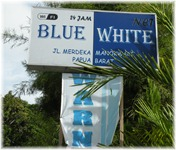 papua-blue-white